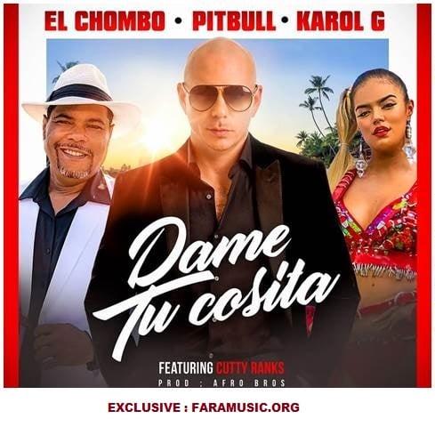 دانلود آهنگ Pitbull به نام Dame Tu Cosita