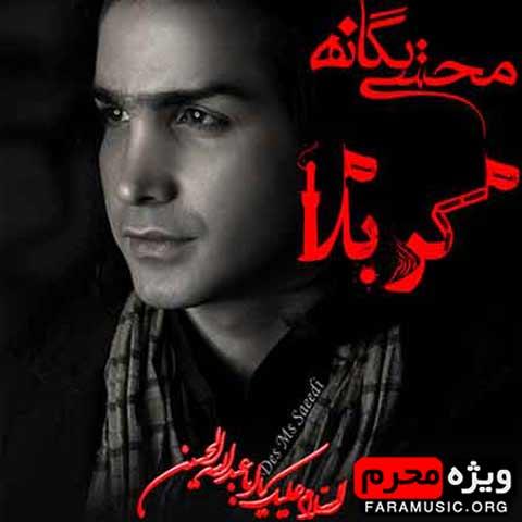 محسن یگانه کربلا