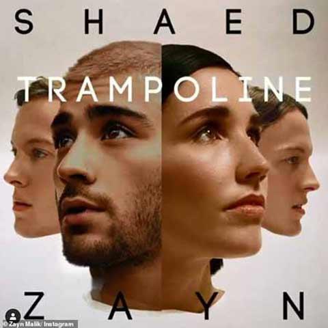 ZAYN Trampoline