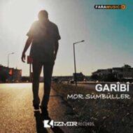 دانلود آهنگ ترکی Garibi به نام Mor Sümbüller