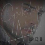 دانلود آهنگ ترکی Gokhan Akar به نام Ruh Esi II