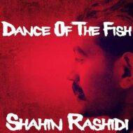 دانلود آهنگ شاهین رشیدی به نام رقص ماهی ها