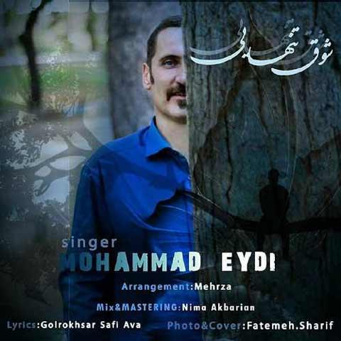 محمد عیدی شوق تنهایی